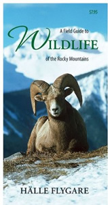A Field guide to Wildlife in the Rocky Mountains