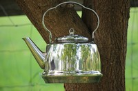 Petromax Stainless Steel Camp Kettle Large Photo