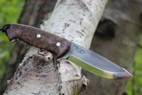 Cosmo Bushcraft 154CM in Maple Burl #1